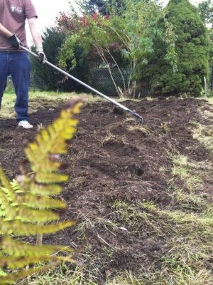 Beet anlegen: Ein Mann harkt ein frisch umgegrabenes Beet.
