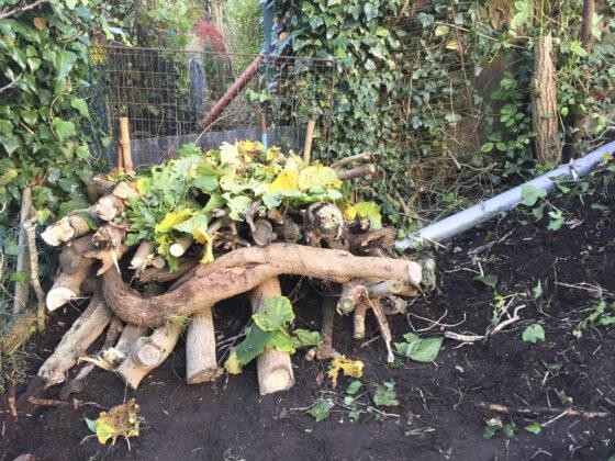 Igelhaus bauen: Auf einem Gerüst aus Zweigen und Ästen entsteht ein Dach aus Laub.