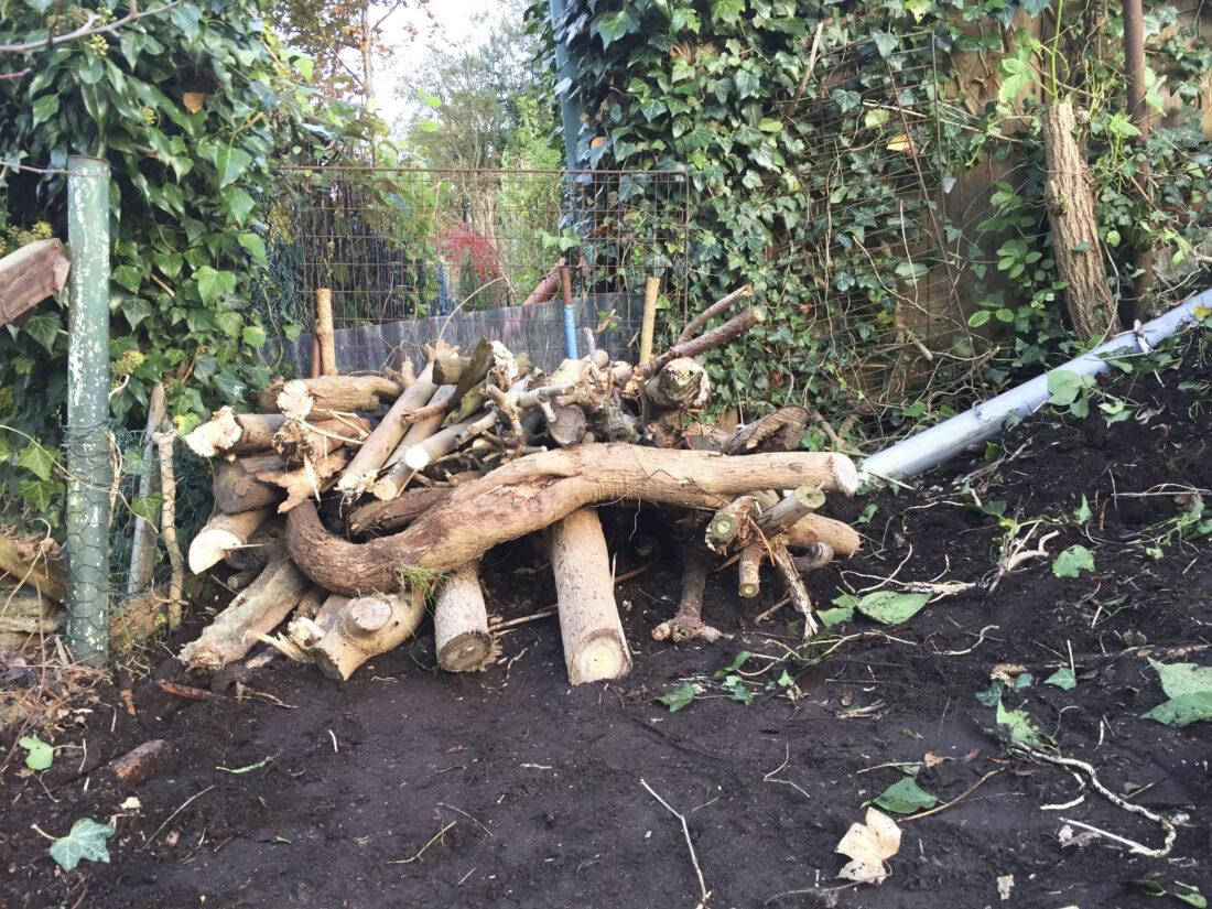 Igelhaus bauen: Aus Ästen und Zweigen entsteht eine Art Gerüst.
