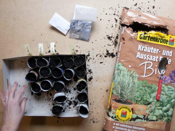 Befüllte Saatöpfchen stehen in einer Pappkiste neben einem Sack Gartenerde.