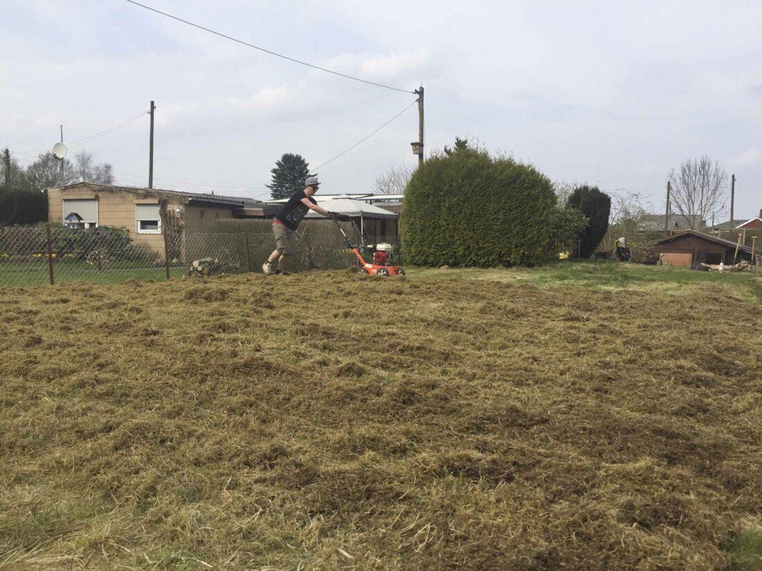 Ein Mann schiebt einen Vertikutierer über einen Rasen.
