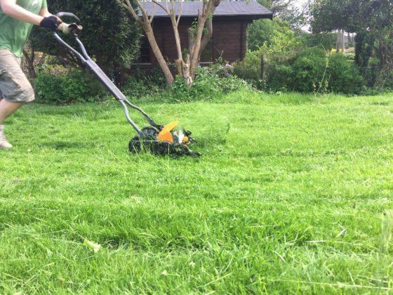 Ein Mann schiebt einen Spindelrasenmäher über einen Rasen.