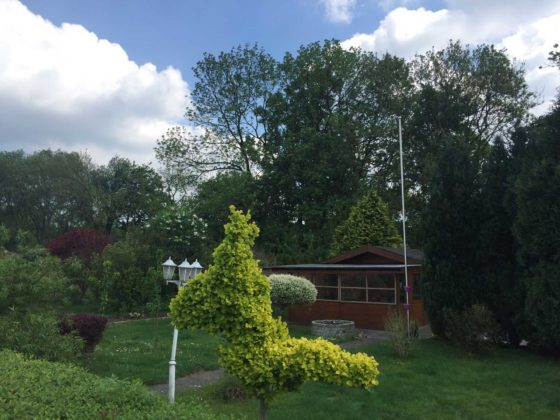 Baum-und-Pferd-Garten: ein Baum in Pferdeform.