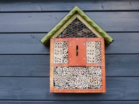 Eine Idee für Garten-Geschenke: ein Insektenhotel in Orange und Grün an einer Hüttenwand