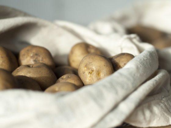 Saatkartoffeln in einem Jutebeutel