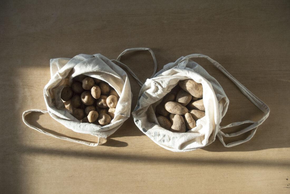 Die Saatkartoffeln von zwei Sorten liegen –in Jutebeuteln gelagert – nebeneinander auf einem Tisch.