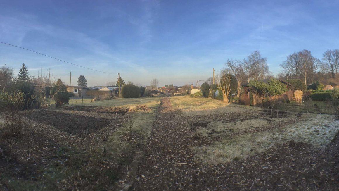 Blick in den Garten – Kleingarten Hamburg – November im Garten