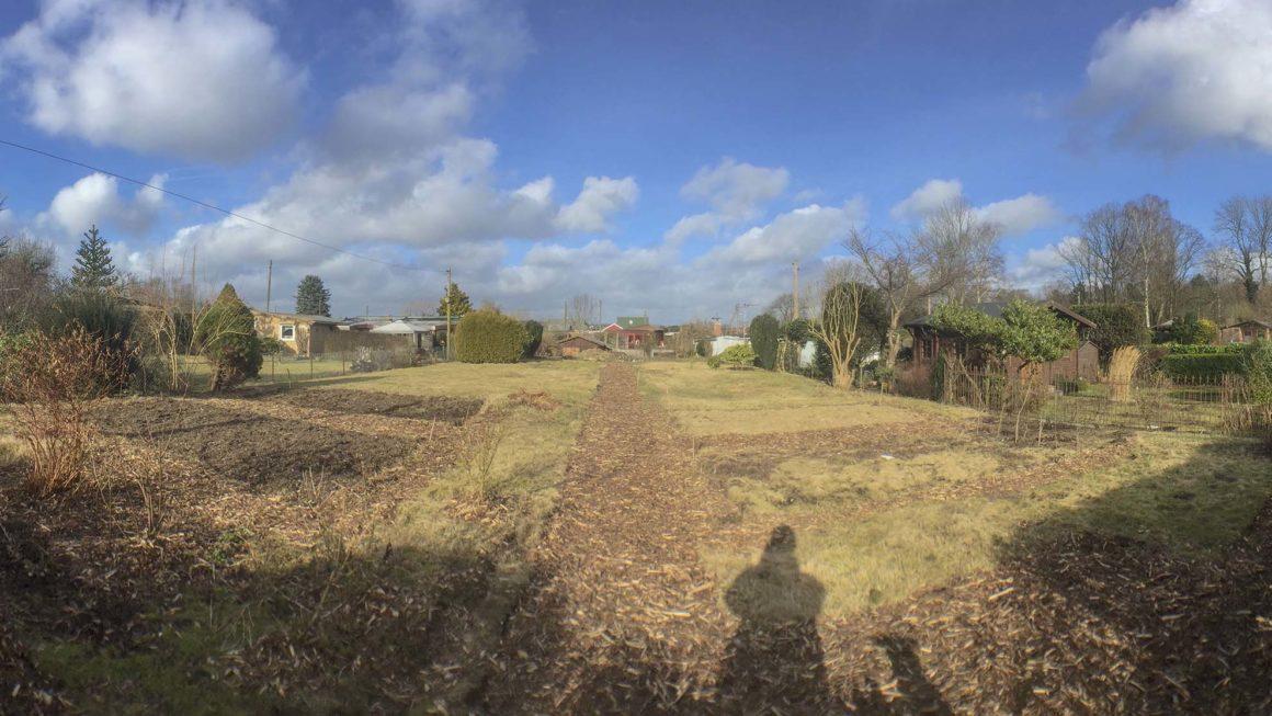 Blick in den Garten – Kleingarten Hamburg – Februar