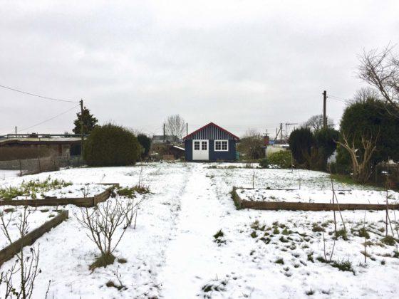 Garten im Winter: Blick in den verschneiten Kleingarten im Januar 2018.