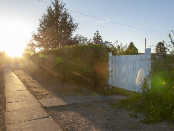 Gartentor selber bauen: Unser selbstgebautes Gartentor im Sonnenuntergang.