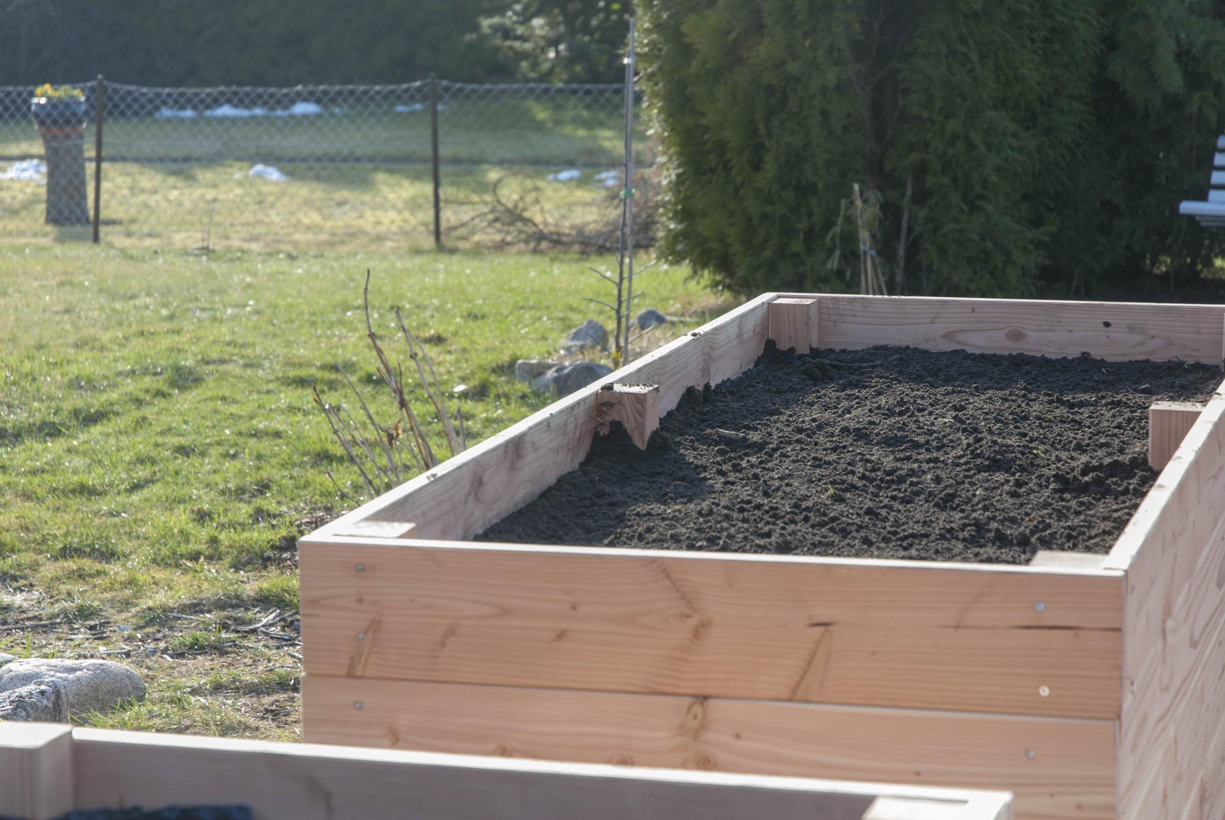 hochbeet bepflanzen tipps zur pflanzenauswahl und wie es geht. Black Bedroom Furniture Sets. Home Design Ideas